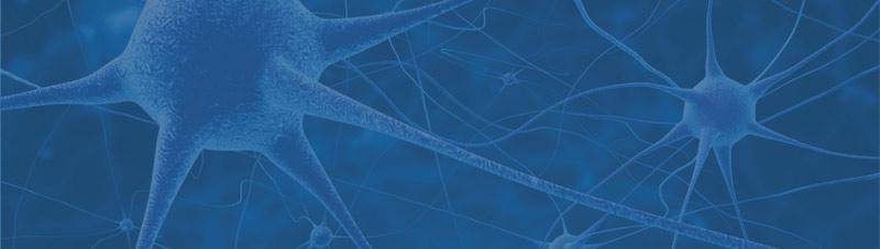 Bild von Synapsen als Metapher fuer die Verlinkung